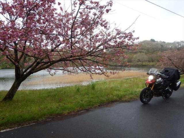 バイクの画像