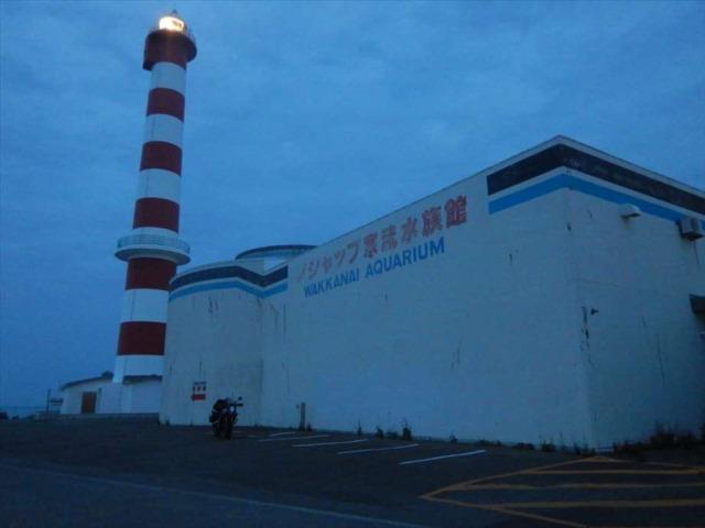 ノシャップ寒流水族館