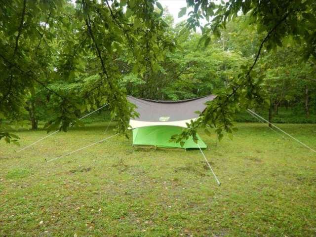 桜ヶ丘公園オートキャンプ場