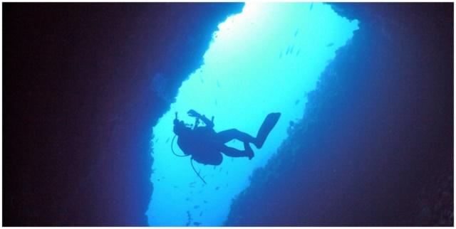 ダイビングの画像