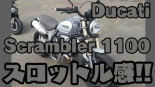 スクランブラー1100-サムネイル画像